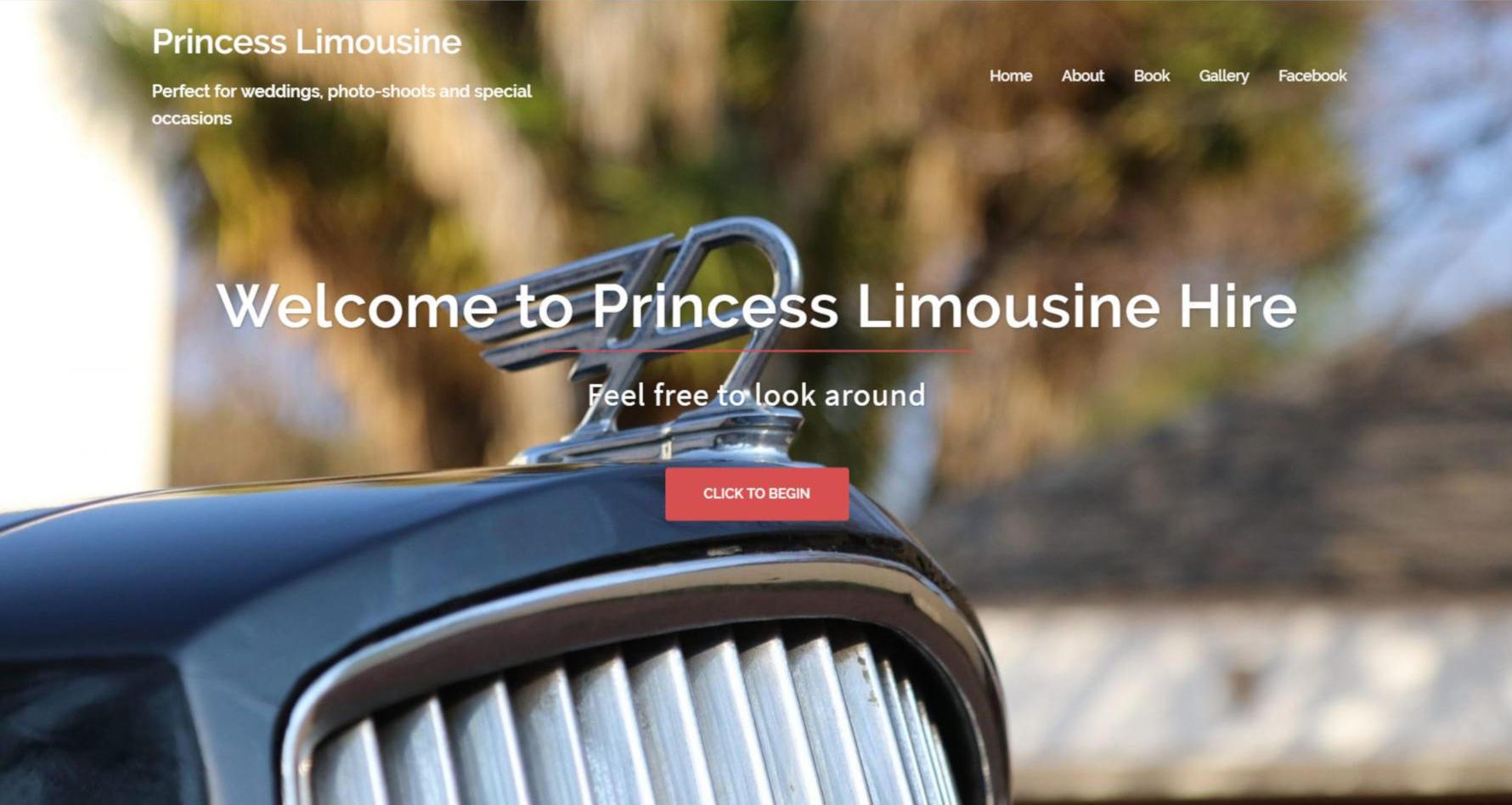 Princess Limousine